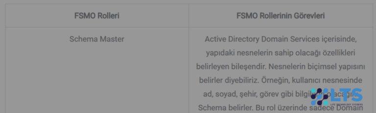 Active Directory FSMO Rolleri ve Açıklamaları